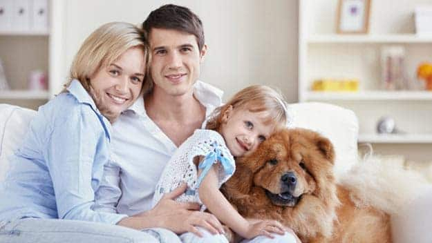 Wills & Trusts dog-young-family Direct Wills Verwood